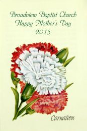 Carnation Mother's Day Seed Packet